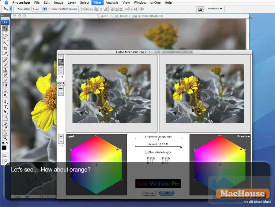 Ditital Light & Color Color Mechanic Pro